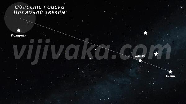 Найти Полярную звезду по звездам из созвездия Лебедя несколько сложнее, чем в предыдущих случаях, но при предварительной тренировке это получается сделать без труда.