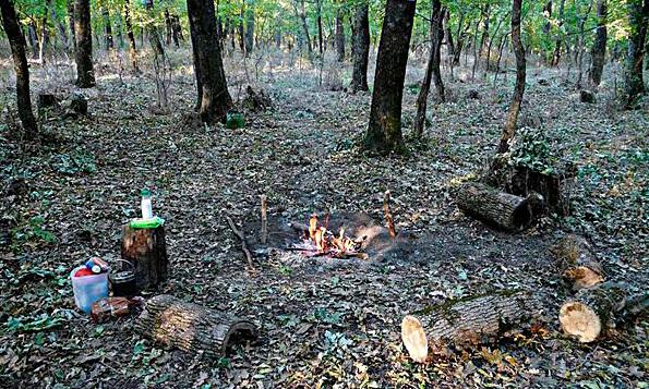 В данном случае пожароопасности такое кострище практически не представляет, поскольку возле него нет легковоспламеняющихся предметов.