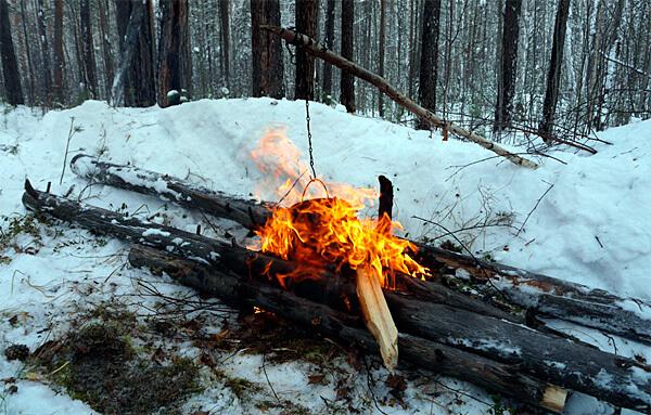 В старом лесу собрать бревна для такого настила не будет большой проблемой.