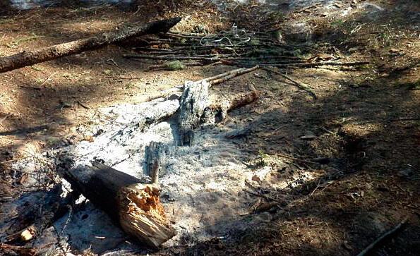Судя по кострищу, огонь здесь горел в течение нескольких последних дней.