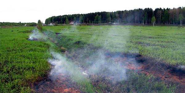 На месте осушенного болота обнажился слой торфа, который затем загорелся от случайно брошенного окурка или, возможно, от костра.