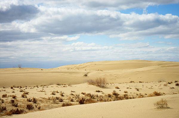 Тем не менее, практика показывает, что в туристическом походе в пустыне костер особенно и не нужен.
