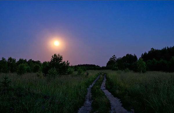 Даже в полдень по Солнцу можно сориентироваться с более-менее приемлемой точностью.